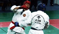 arb Martial Arts