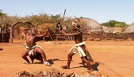 nguni stick-fighting