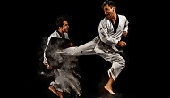 tae kwon do Martial Arts