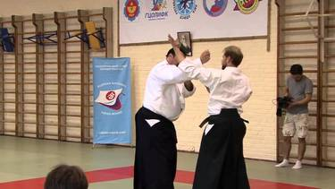 martial arts video